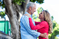 Romantic mature couple hugging against tree Stock Photography