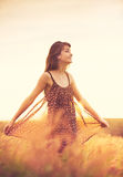 Romantic Model in Sun Dress in Golden Field at Sunset Royalty Free Stock Images