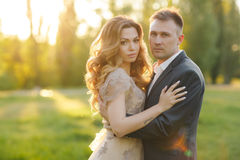 Romantic moments of a young wedding couple on summer meadow Royalty Free Stock Photos