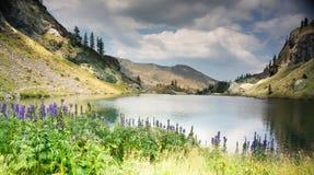 Romantic mountain lake in Alps Royalty Free Stock Photos