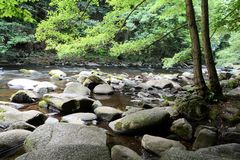The romantic mountain stream Bode. In the Harz National Park Royalty Free Stock Photography