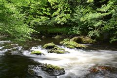 The romantic mountain stream Bode. In the Harz National Park Stock Photos