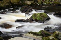 The romantic mountain stream Bode Stock Photography