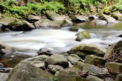 The romantic mountain stream Bode Royalty Free Stock Photos