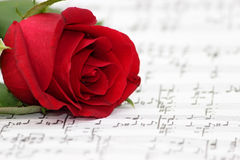 Romantic music, rose, piano sheet. Piano music script with a deep red rose and notations and musical notes on the paper. A metaphor for romantic music or love stock photo