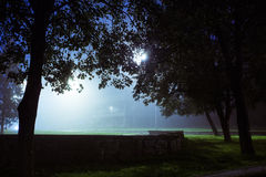 Romantic and mysterious city park covered with fog. Night time. Blurred city lights glow through leaves of trees Royalty Free Stock Images