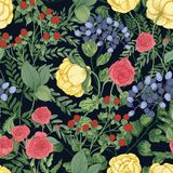 Romantic natural seamless pattern with garden blooming flowers and flowering herbs on black background. Elegant. Botanical backdrop. Beautiful realistic vector Royalty Free Stock Photography