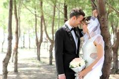 Romantic newlywed couple cuddling under the tree Royalty Free Stock Image
