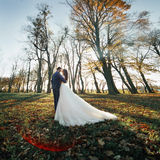 Romantic newlywed couple hugging and kissing in autumn forest at Royalty Free Stock Photography
