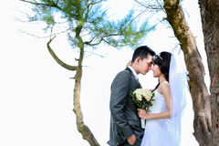 Romantic newlywed couple touching forehead. Under the tree with copy space Stock Photo