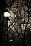 Romantic night streetlight Stock Image