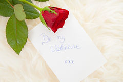 Romantic note with red rose Stock Photography