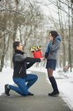 romantic offer to get married. man makes an offer to his girlfriend in winter park. Valentine day Proposal concept. Young man royalty free stock photography