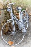 Romantic Old Bike in White. Old bike as a memory of some old times .. Very romantic and sweet Royalty Free Stock Photography