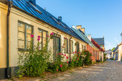 Romantic old house with hollyhocks on the pavement Stock Photography