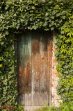 Romantic old wooden garden gate outdoor, surrounded with plants Stock Photos