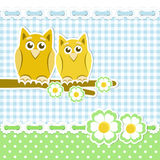 Romantic owls on blossoming branch Royalty Free Stock Photos