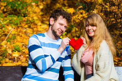 Romantic pair sit on bench in autumnal park. Expressing feelings and affection. Confess love with romantic gesture. Young couple sit on bench in park holding Royalty Free Stock Photography