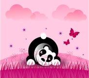Romantic panda bear Royalty Free Stock Photos