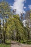 Romantic Park in Arkadia in Poland Stock Photo
