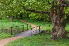 Romantic path in the park near Westohove medieval castle Royalty Free Stock Photo