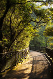 Romantic peak way in Hong Kong, Royalty Free Stock Photography