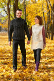 Romantic people, happy adult couple walk in autumn city park, trees with yellow leaves, bright sun and happy emotions, tenderness Royalty Free Stock Photos
