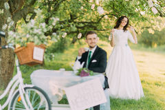 Romantic picknick in park. Playful bride closing to her lovely new husband from back Royalty Free Stock Photo