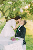 Romantic picknick in park. Playful bride kissng her lovely new husband while he sits at table Royalty Free Stock Photo