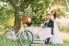 Romantic picknick under a tree in park. Playful bride shutting eyes of her lovely groom.  royalty free stock photo