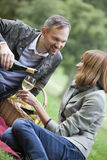Romantic picnic Royalty Free Stock Photo