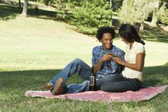 Romantic picnic. Couple having romantic picnic in park toasting wine Stock Images