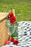 Romantic Picnic Drink. Romantic picnic with wine & roses Stock Image