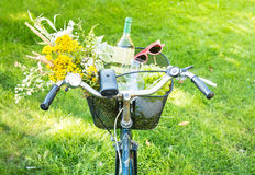 Romantic picnic - flowers and wine in bicycle basket Stock Photos