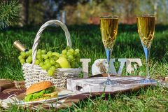 Romantic Picnic Fresh Meal at Summer Green Meadow royalty free stock photo