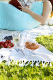 Romantic picnic. Love. Romantic picnic in the park Royalty Free Stock Photos