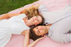 Romantic picnic in the park Royalty Free Stock Photos