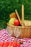 Romantic picnic set Stock Photos