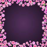 Romantic Pink Floral Frame on Dark Purple Background Stock Photos