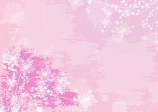 Romantic pink flower background Stock Photos