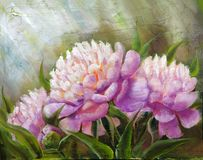 Peonies, oil painting on canvas stock illustration