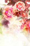 Romantic pink roses background. Romantic pink roses vintage background stock photo