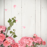 Romantic pink roses and branches of ivy on white wooden background stock images