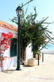Romantic place with red flowers, Cascais, Portugal Stock Photography