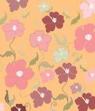 Romantic Poppy flowers Stock Images
