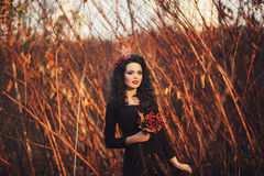 Romantic portrait of a girl Royalty Free Stock Image