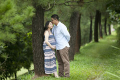 Romantic pregnant couple Stock Image