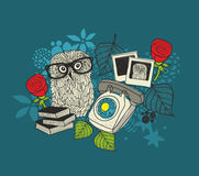 Romantic print with cute male owl and female owl photos. Stock Images