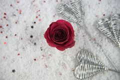 Christmas or Valentine romantic winter season photography image of red rose flowers in snow with glitter petals. Romantic real red rose flowers with glitter on stock photos
