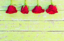 Love flowers, red roses background for Mothers Day or Valentines Day. Romantic red roses background on rustic green wood with copy space for Valentine or Mothers royalty free stock photo